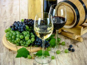 curiosità sul vino