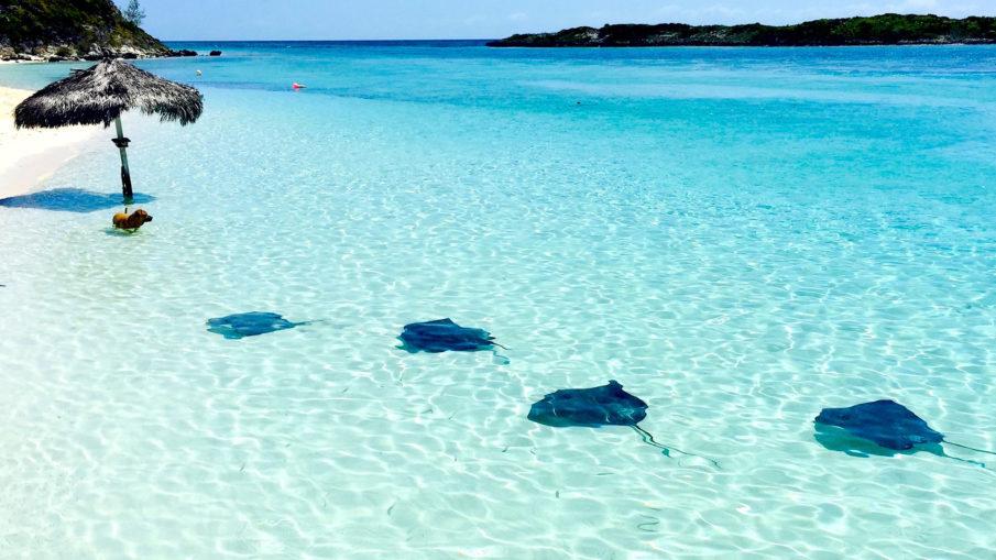 Il periodo migliore per andare alle Bahamas